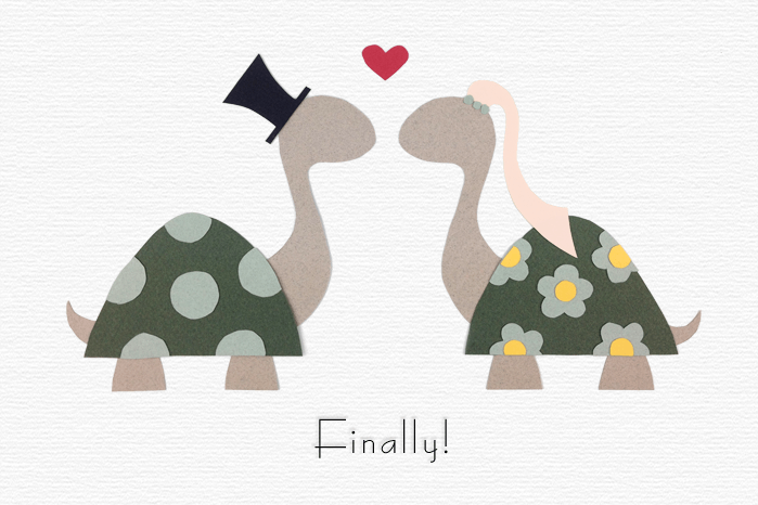 Finally - turtles